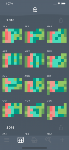 Moodistory App Calendar Yearly View