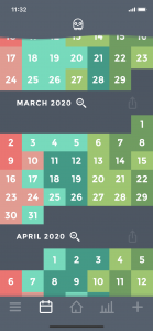 Moodistory App Calendar Monthly View