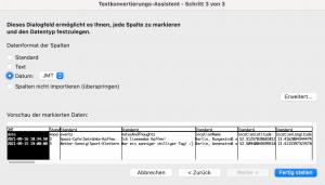 CSV Datei in Excel importieren